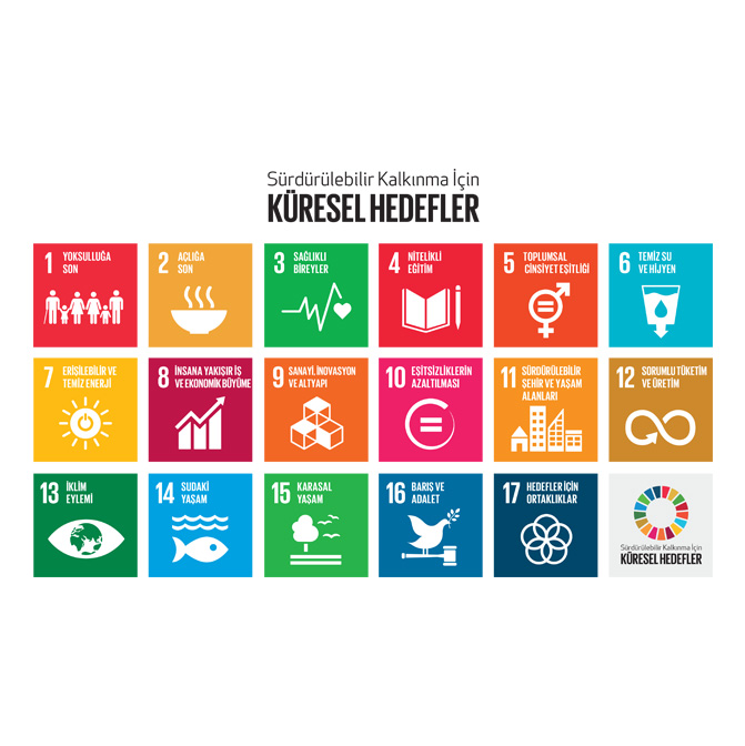 Küresel Hedefler Temel Logo